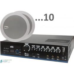 300m2 6w (amplificador 120w y 10 altavoces)