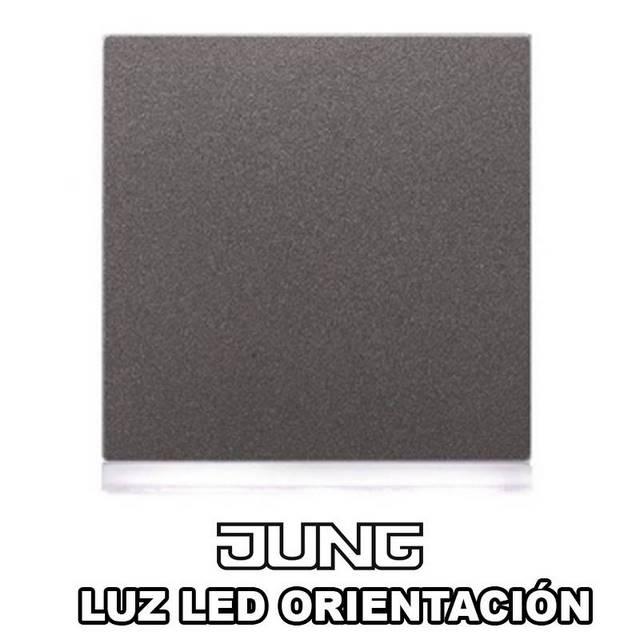 JUNG-LUZ ORIENTACION